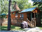 View larger image of Lodging at CIRCLE M CAMPING RESORT image #8