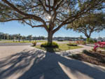View larger image of PARADISE OAKS RV RESORT at BUSHNELL FL image #12