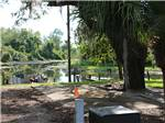 View larger image of Campsite on lake at FISHERMANS COVE GOLF  RV RESORT image #3