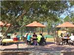 View larger image of Tennis courts at LAKE OSPREY RV RESORT image #5
