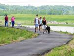View larger image of People walking their dogs at 370 LAKESIDE PARK RV CAMPGROUND image #4