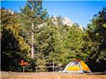 View larger image of Tent with picnic table at IDYLLWILD RV RESORT image #2