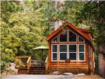 View larger image of Cabin with patio seating at IDYLLWILD RV RESORT image #4