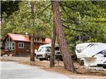 View larger image of RV trailer and cabin at IDYLLWILD RV RESORT image #5
