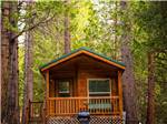 View larger image of Cabin at IDYLLWILD RV RESORT image #9