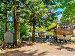 View larger image of Trailer with picnic table camping at campsite at CHEHALIS RESORT image #6