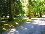 View larger image of Tents at GRANDY CREEK RV CAMPGROUND KOA image #4