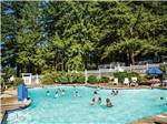 View larger image of Kids swimming in pool at PARADISE THOUSAND TRAILS RESORT image #3