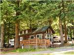 View larger image of Cabins and trailers camping at PARADISE THOUSAND TRAILS RESORT image #4
