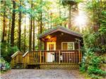 View larger image of Cabin with deck at SOUTH JETTY RV  CAMPING RESORT image #5