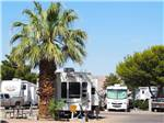 View larger image of RVs and truck and trailers camping at THOUSAND TRAILS LAS VEGAS RV RESORT image #2