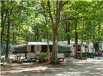 View larger image of Trailers with picnic tables camping at SEA PINES RV RESORT  CAMPGROUND image #1
