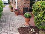 View larger image of Brick and stone walkway with landscaped shrubbery and potted flowers at PALM BEACH TRAVELER RV PARK image #4