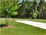 BELLE PARC RV RESORT at BROOKSVILLE FL