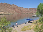 View larger image of Lady fishing at WILLOW BEACH MARINA  CAMPGROUND image #12