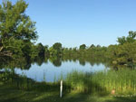 View larger image of HIDDEN LAKE RV PARK at BEAUMONT TX image #2