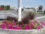 View larger image of Flowers outside office at RV VILLAGE RESORT image #4