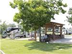 View larger image of Trailers and RVs camping at WINDEMERE COVE RV RESORT image #3
