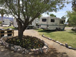 View larger image of RVs and trailers at campgrounds at SHOSHONE RV PARK image #3