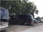 View larger image of Woods at WALNUT GROVE RV PARK image #4