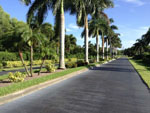 View larger image of Road leading into campgrounds at GULF WATERS RV RESORT image #8