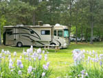 Plum Nelly Campground