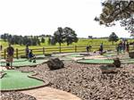 View larger image of The miniature golf course at RUSHMORE SHADOWS RESORT image #6