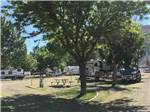 View larger image of RVs and trailers at campground at SLEEPING UTE RV PARK image #6