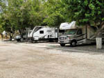 View larger image of RVs parked in gravel sites at RIO VERDE RV PARK image #6