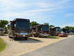 View larger image of Large RVs parked in a row along paved road at I 35 RV PARK  RESORT image #2