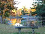 View larger image of View overlooking lake at HAWKINS CREEK CAMPGROUND image #5