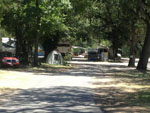 View larger image of Tent and trailers at campgrounds at SEQUOIA RV RANCH image #3
