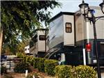 View larger image of RVs and trailers at campgrounds at VINES RV RESORT image #9