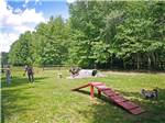 View larger image of Fenced play area for dogs at OLD ORCHARD BEACH CAMPGROUND image #10