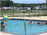 View larger image of People swimming in pool at NATALBANY CREEK CAMPGROUND  RV PARK image #5