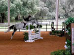 View larger image of Girl riding horse at GRAND OAKS RESORT image #8