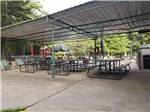 View larger image of Log cabins with beautiful decks at SHREVEPORTBOSSIER KOA image #8