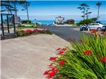 View larger image of View of the ocean from a site at PACIFIC SHORES MOTORCOACH RESORT image #6