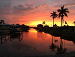 View larger image of Sherbert colored sunset with silhouetted palm trees at ORANGE HARBOR CO-OP  RV RESORT image #2