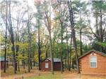 View larger image of Log cabins at CERALAND PARK  CAMPGROUND image #4