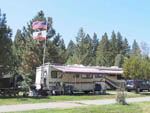 View larger image of RVs parked at campground at TRUCKEE RIVER RV PARK image #2