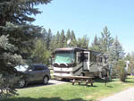View larger image of RV camping at park at TRUCKEE RIVER RV PARK image #3