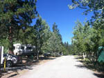 View larger image of Gravel road leading into campground at TRUCKEE RIVER RV PARK image #6