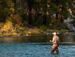 View larger image of Man fly fishing in the river at TRUCKEE RIVER RV PARK image #9