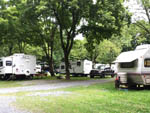 View larger image of RV sites in the trees at JONESTOWN AOK CAMPGROUND image #4