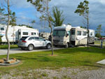 View larger image of RVs and trailers at campgrounds at LITTLE TURTLE RV  STORAGE image #11