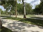 View larger image of Campground with trees at SANCTUARY RV RESORT image #6