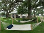 View larger image of Hammock at BRAZORIA LAKES RV RESORT image #8