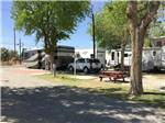 View larger image of RVs and trailers at campground at ARABIAN RV OASIS image #3