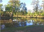 View larger image of RV parked next to pond at MAGNOLIA FOREST RV PARK image #3